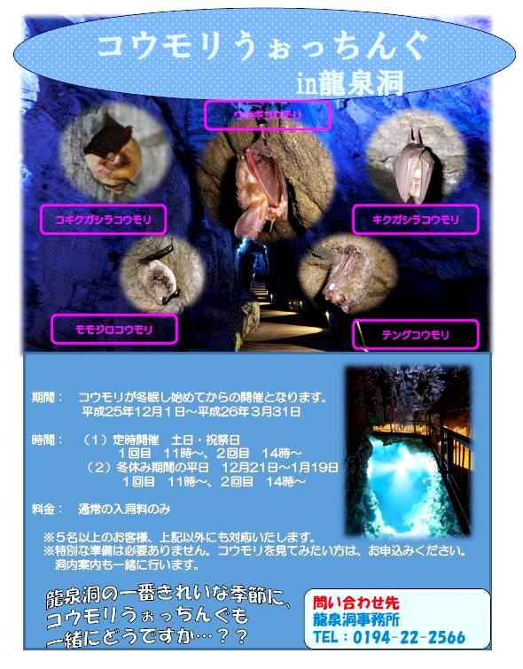 2013_11_28-4