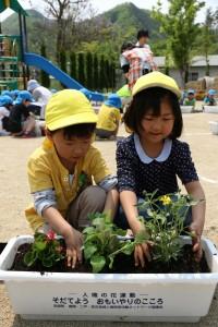 花を植える園児