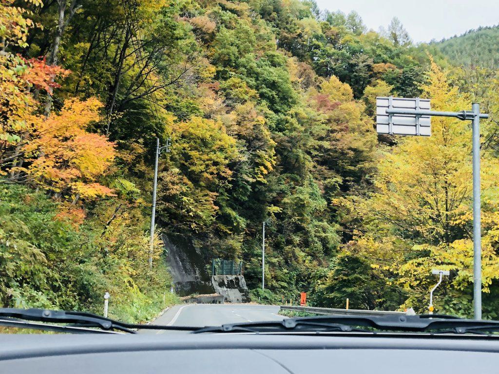 早坂高原から紅葉のお知らせ