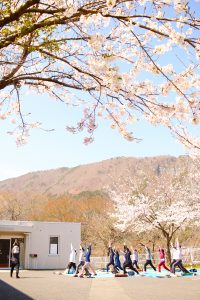 We are refreshed under the cherry tree of Iwaizumi-cho