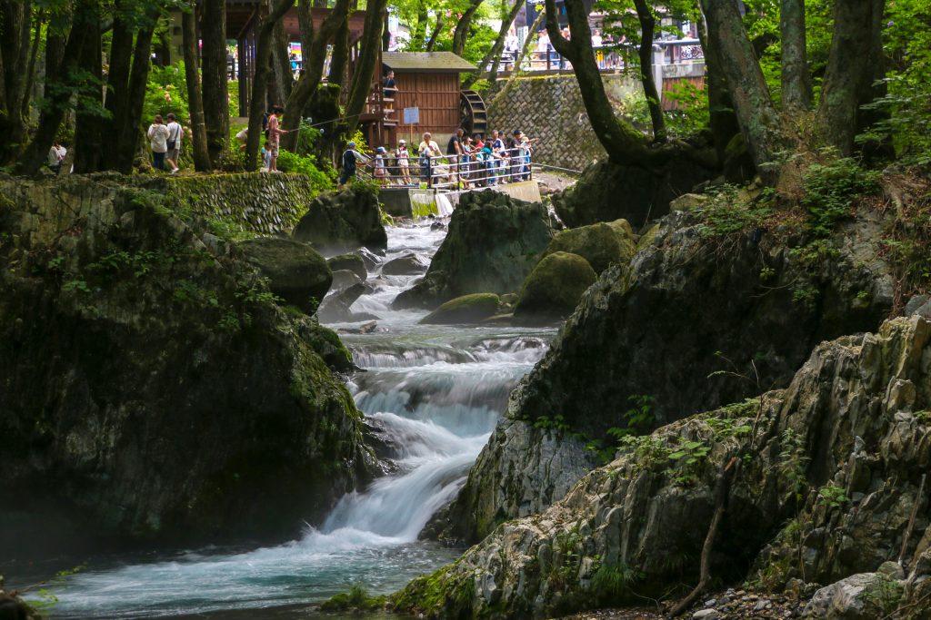 岩泉町・清水川で渓流釣り体験   いわいずみブログ